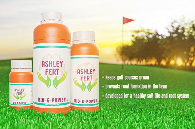 Ashley Fert (Enzym)