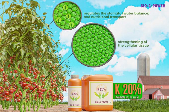 K20% (Potassium)